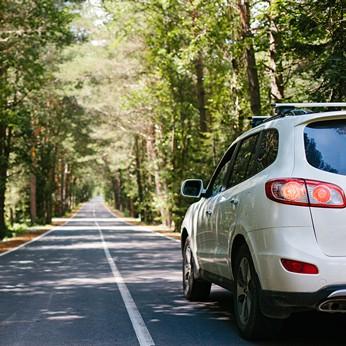 Autofahren in der Natur - mit bessergrün leistungsstark versichert sein und zugleich einen Beitrag zu unserer Umwelt leisten.
